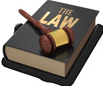 avocati-avocat